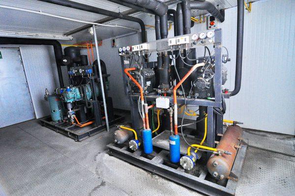 Unidad Condensadora Compuesta De Dos Compresores Bitzer De 35 CV Por Unidad. Unidad Condensadora Compuesta De Dos Compresores Bitzer De 35 CV Por Unidad
