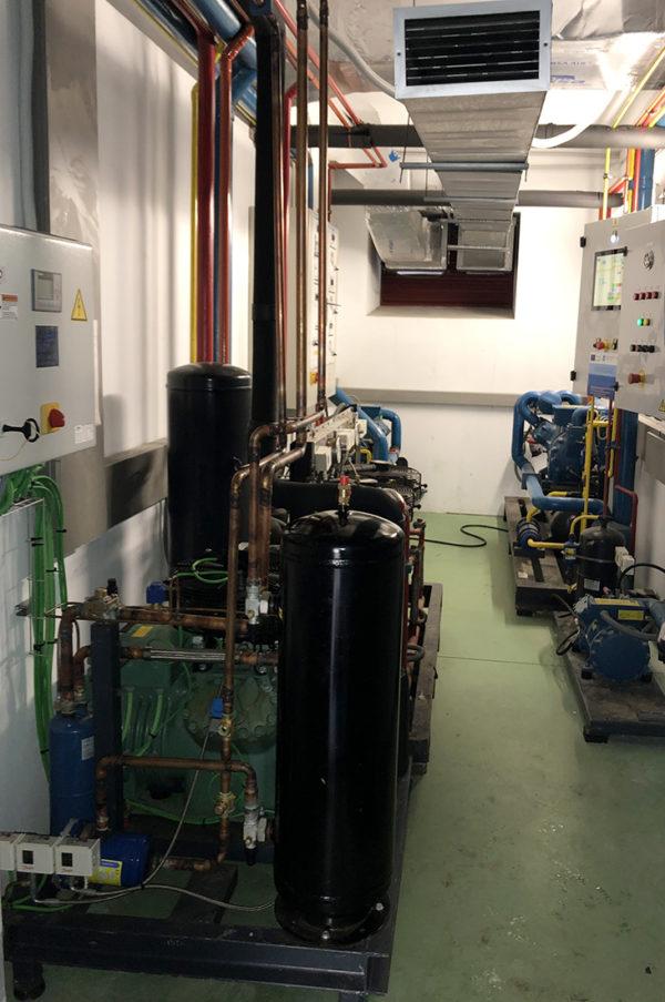 Lonja De Cangas. Unidad Compresora Con Compresor Frigorífico De Pistones 30 CV Cámara Frigorífica De Mantenimiento De Congelado